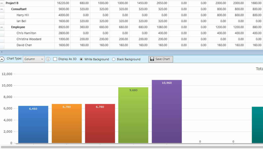 Financial report of eRS software for resource management Desktop Version
